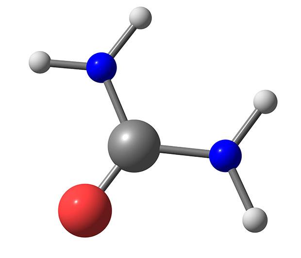 Azotemia